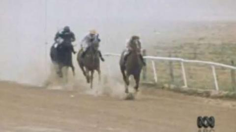 This Day Tonight: Birdsville Cup Races